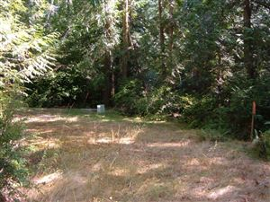 Photo of 117 E LIBERTY Rd, Shelton, WA 98584 (MLS # 659781)