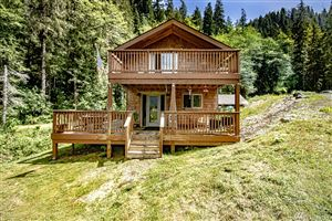 Photo of 910 South Shore Rd, Quinault, WA 98575 (MLS # 1461785)