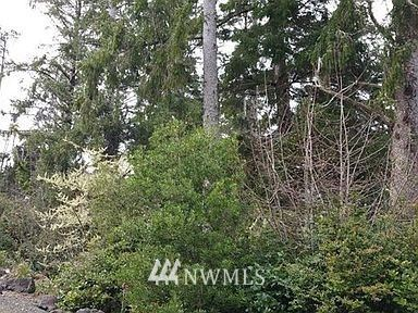 Photo of 1101 309th Place, Ocean Park, WA 98640 (MLS # 1715788)