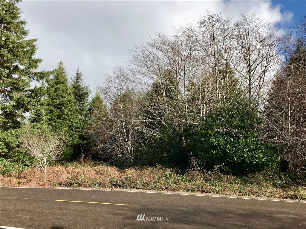 Photo of 0 Ranta Rd, South Bend, WA 98586 (MLS # 1564788)
