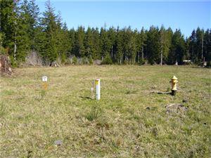 Photo of 1 Sawyer Wy Lot: 1, Forks, WA 98331 (MLS # 736790)