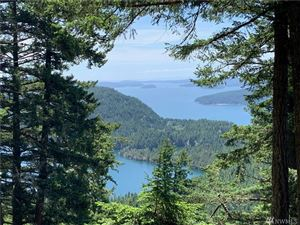 Photo of 1357 Vusario Lane, Orcas Island, WA 98245 (MLS # 1469798)