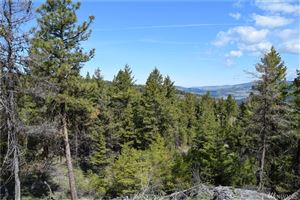 Photo of 1111 Rocky Canyon Rd Lot: 22-1, Tonasket, WA 98855 (MLS # 1331800)