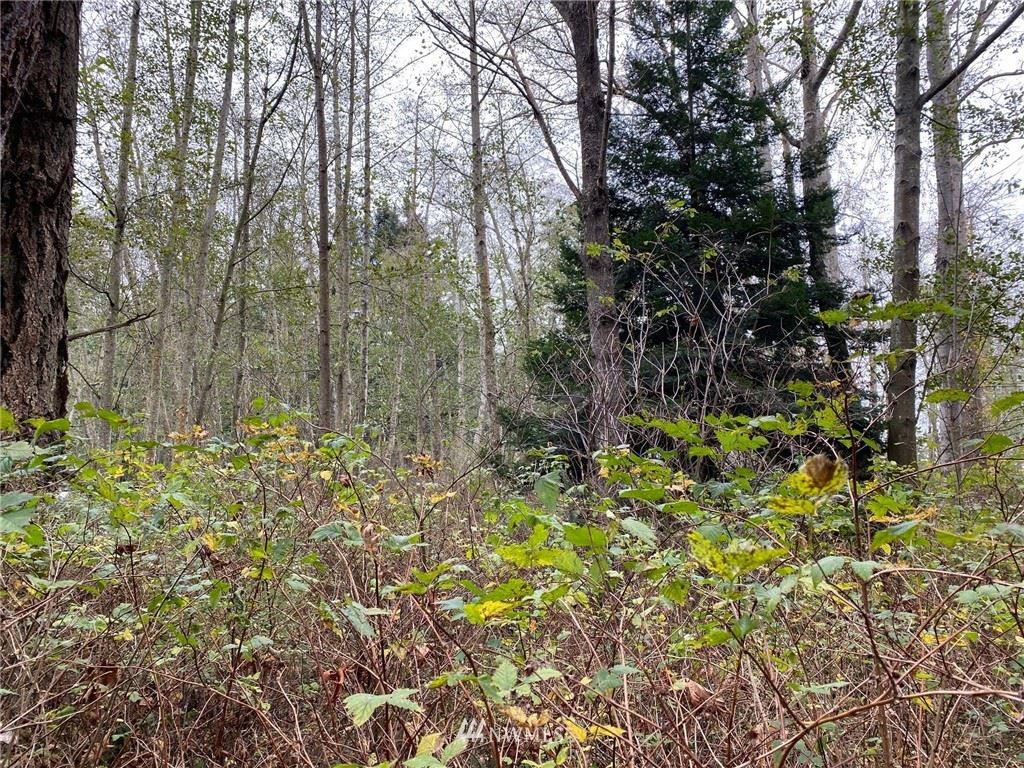 Photo of 0 Eliza Place, Anacortes, WA 98221 (MLS # 1686801)