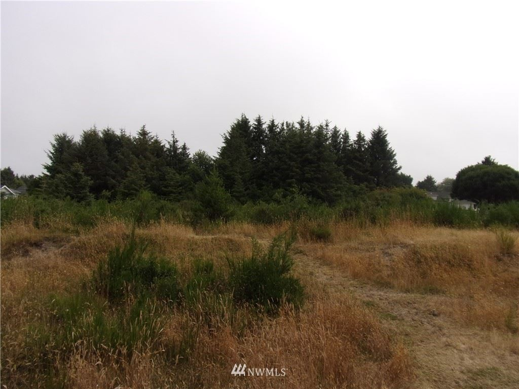 Photo of 740 Island Circle SE, Ocean Shores, WA 98569 (MLS # 1638832)