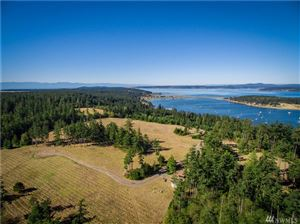 Photo of 123 Dragon Run Rd, Lopez Island, WA 98261 (MLS # 1496834)