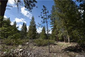 Photo of 33 B BUTTERMILK CREEK ROAD E, Twisp, WA 98856 (MLS # 1440841)