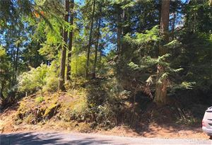 Photo of 0 Roehl's hill Rd., Orcas Island, WA 98245 (MLS # 1343845)