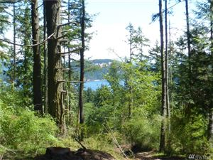 Photo of 480 Hooterville Lane, Lopez Island, WA 98261 (MLS # 1454853)