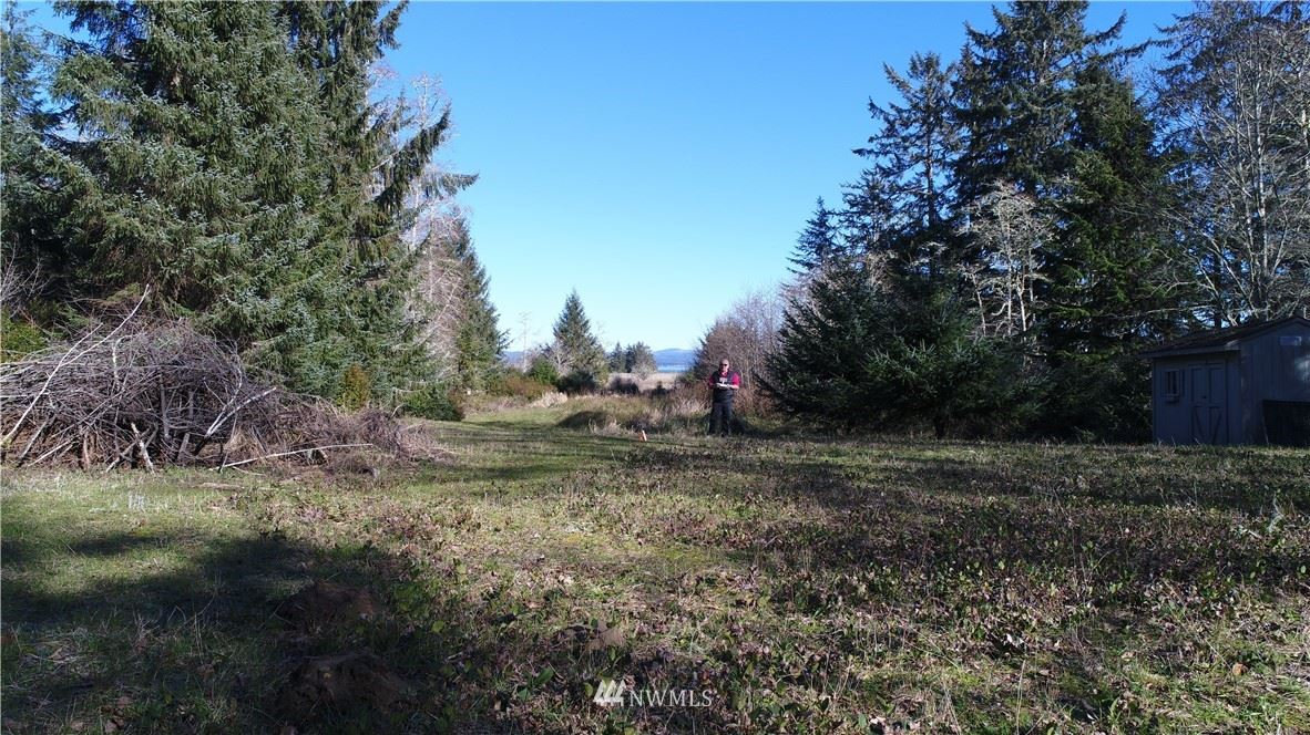 Photo of 38202 Stackpole Rd, Oysterville, WA 98641 (MLS # 1481862)