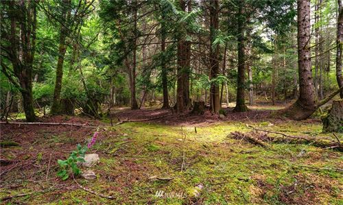 Photo of 801 Shoreland Drive, Lopez Island, WA 98261 (MLS # 1710863)