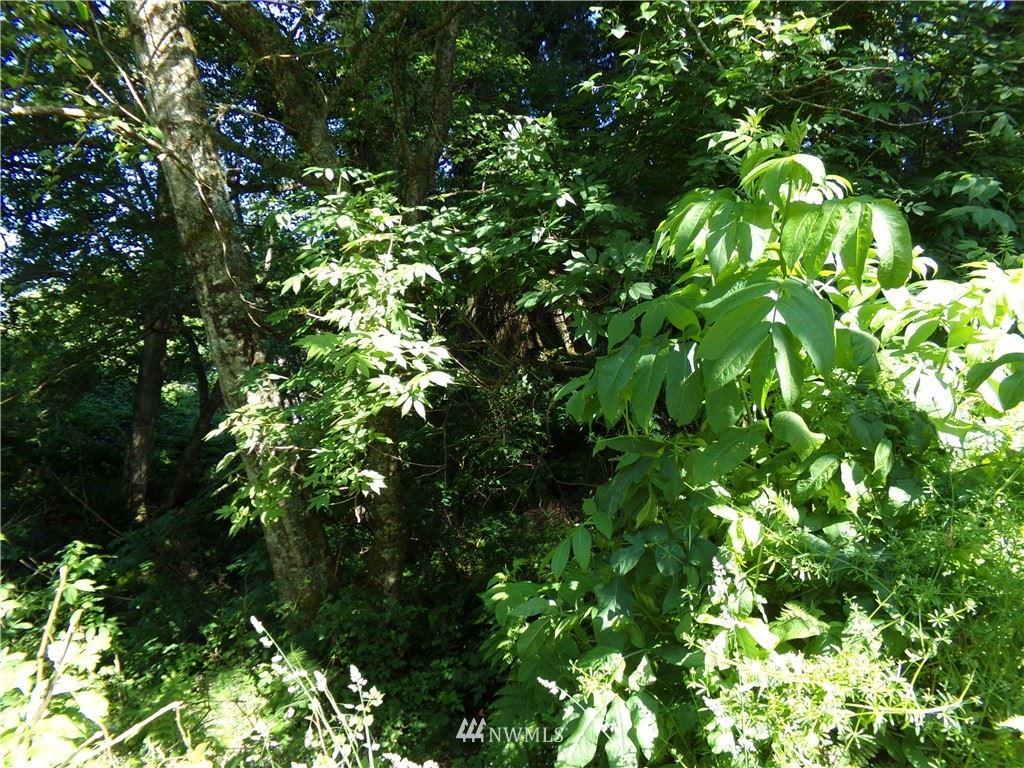 Photo of 0 Hwy 101, Ilwaco, WA 98644 (MLS # 1794866)