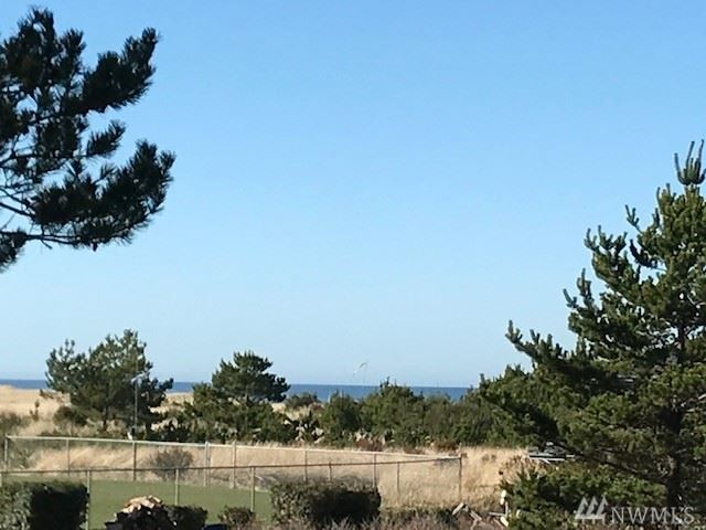 Photo of 1215 197th St, Long Beach, WA 98631 (MLS # 1638871)