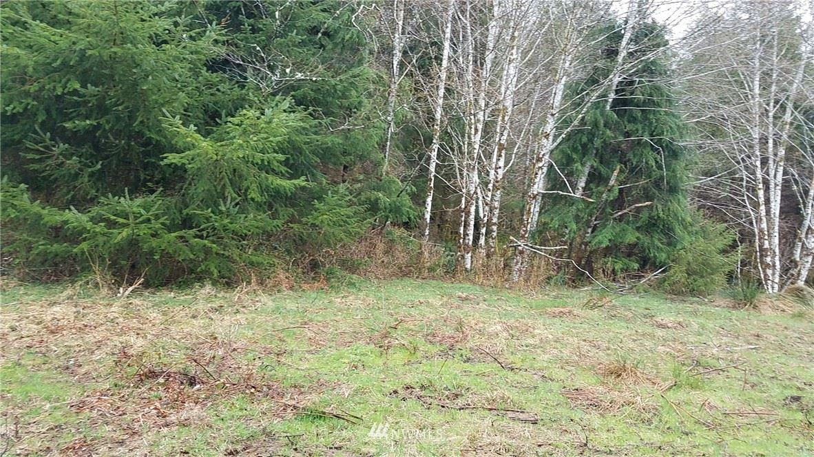 Photo of 9999 South Valley Rd  lot #7, Naselle, WA 98638 (MLS # 1431873)