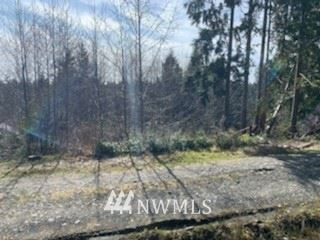 Photo of 88888 Oil City First Addition, Forks, WA 98331 (MLS # 1743878)