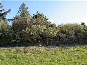 Photo of 998 Point Brown Ave SE, Ocean Shores, WA 98569 (MLS # 1444889)