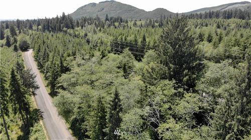 Photo of 999 Salmon Drive, Forks, WA 98331 (MLS # 1797890)