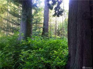 Photo of 4051 Semiahmoo Dr, Blaine, WA 98230 (MLS # 1296894)