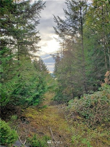 Photo of 0 Eagle Ridge Road, Orcas Island, WA 98245 (MLS # 1682898)