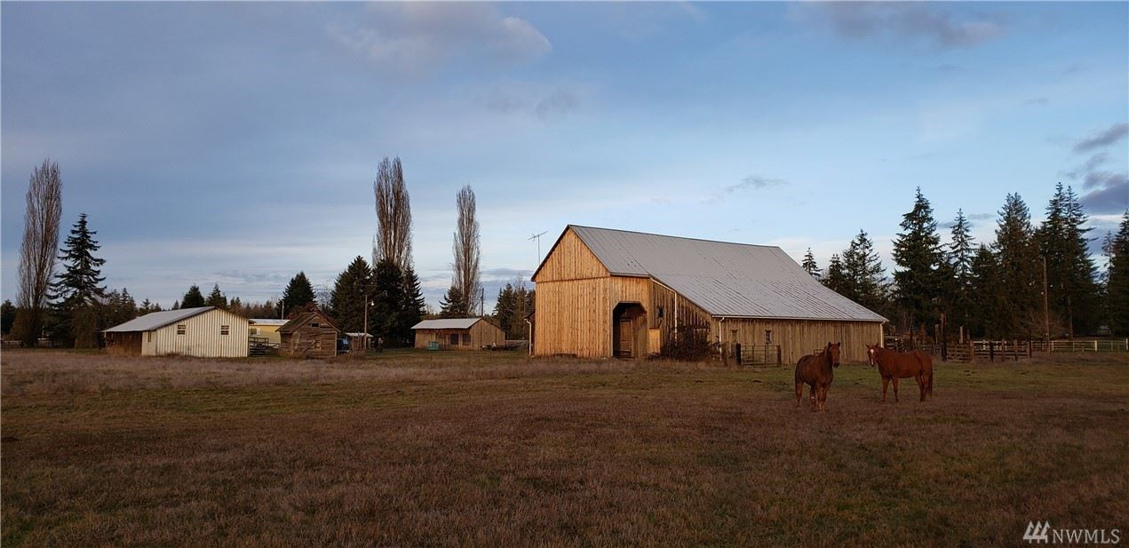 30004 28th Ave S, Roy, WA 98580 - MLS#: 1557921