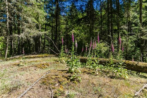 Photo of 0 White Beach-CM Road, Orcas Island, WA 98245 (MLS # 1100925)