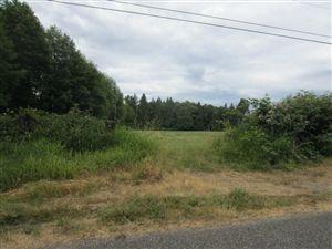 Photo of 6276 Portal Wy, Ferndale, WA 98248 (MLS # 811928)