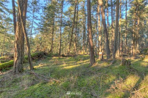 Photo of 4 Spring Point Lot 4B Road, Orcas Island, WA 98243 (MLS # 1794930)