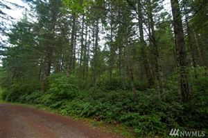 Photo of 15 B E Sherwood Hills Rd S Lot: 2, Allyn, WA 98526 (MLS # 1351944)