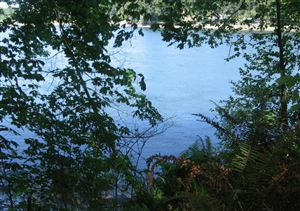 Photo of 0 SE Channel Point Rd, Shelton, WA 98584 (MLS # 787944)