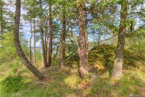 Tiny photo for 3 Village View, Orcas Island, WA 98245 (MLS # 1463954)