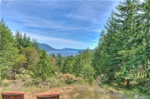 Photo of 192 Osprey Lane, Orcas Island, WA 98245 (MLS # 1475958)