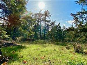 Photo of 0 Rosario Rd, Orcas Island, WA 98245 (MLS # 1502965)