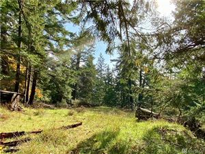 Tiny photo for 0 Rosario Rd, Orcas Island, WA 98245 (MLS # 1502965)