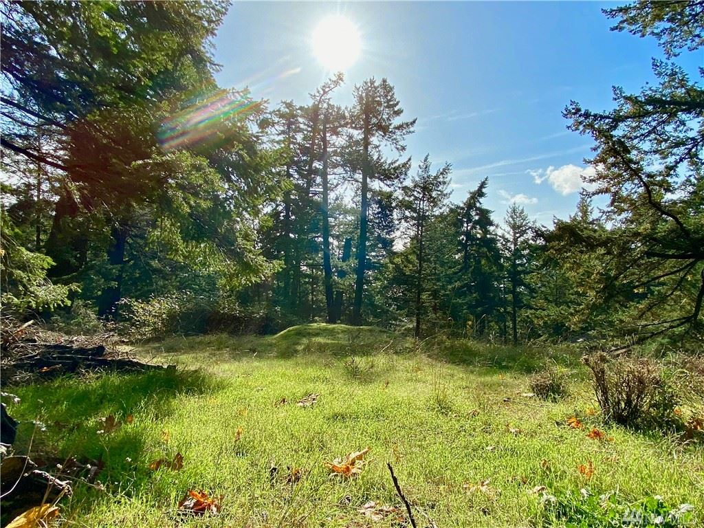 Photo for 0 Rosario Rd, Orcas Island, WA 98245 (MLS # 1502965)