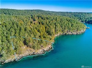 Photo of 1 Parks Bay Dr, Shaw Island, WA 98286 (MLS # 1420975)