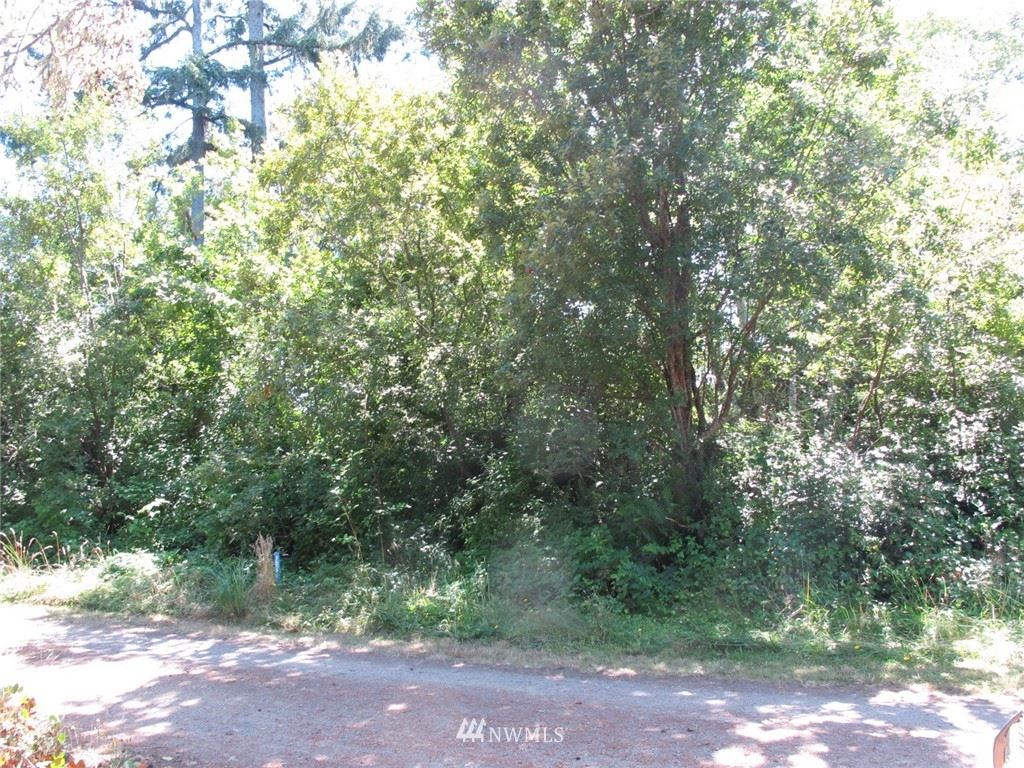 Photo of 1110 309th Place, Ocean Park, WA 98640 (MLS # 1819991)