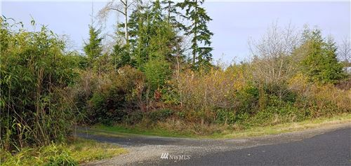 Photo of 2707 Crane Place, Ocean Park, WA 98640 (MLS # 1692994)