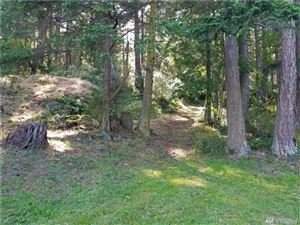 Tiny photo for 2882 Crow Valley Rd, Orcas Island, WA 98245 (MLS # 1469997)
