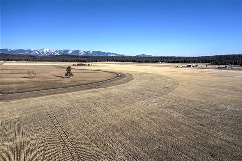 Photo of 1233 Spring Prairie Ranch Road, Whitefish, MT 59937 (MLS # 22017005)
