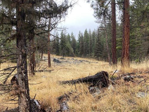 Tiny photo for Tract 4 Hwy 2, Marion, MT 59925 (MLS # 22116050)