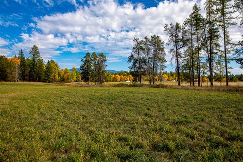 Tiny photo for Nhn Monegan Road, Whitefish, MT 59937 (MLS # 22116058)