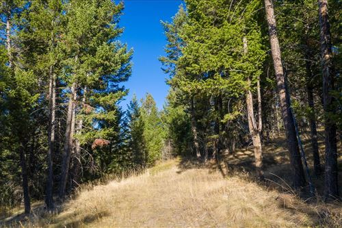 Photo of 252 Walking Coyote Drive, Kalispell, MT 59901 (MLS # 22116063)