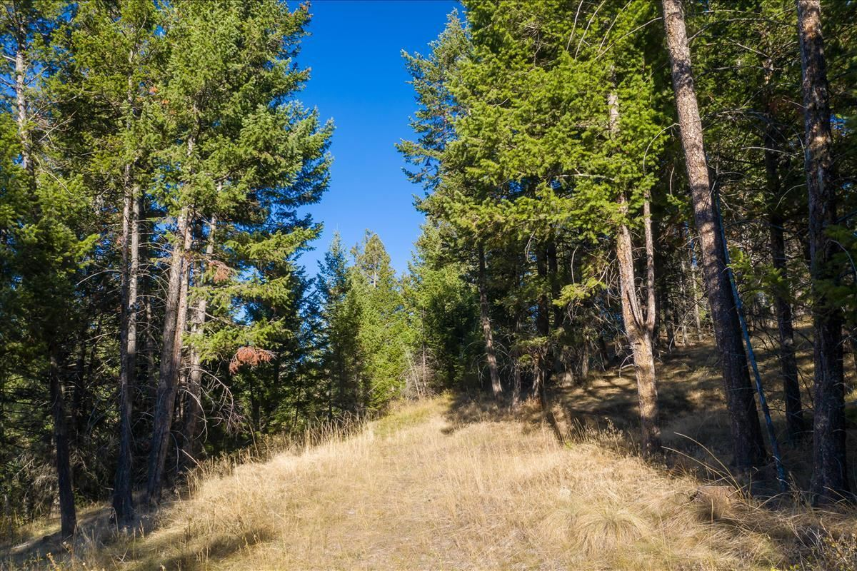 Photo for 252 Walking Coyote Drive, Kalispell, MT 59901 (MLS # 22116063)