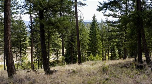 Tiny photo for 325 Political Hill Road, Lakeside, MT 59922 (MLS # 22114124)