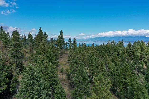 Photo for 325 Political Hill Road, Lakeside, MT 59922 (MLS # 22114124)
