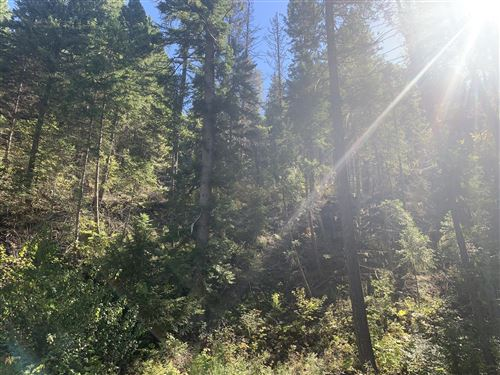 Photo of Nhn Hope Valley  Lot 8 & 9 Road, Trout Creek, MT 59874 (MLS # 22115137)