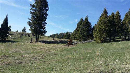 Photo of 97 Lower Raven Road, Helmville, MT 59843 (MLS # 22001139)