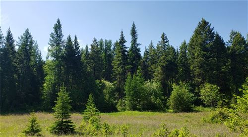 Tiny photo for 500 Blacktail Heights Road, Lakeside, MT 59922 (MLS # 22110155)