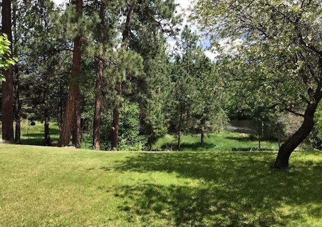 Photo of 3720 Foxglove Road, Stevensville, MT 59870 (MLS # 22015158)