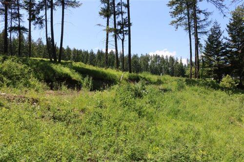 Tiny photo for 73 Bear Paw Loop, Bigfork, MT 59911 (MLS # 22003160)